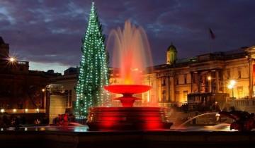 елка и красный фонтан