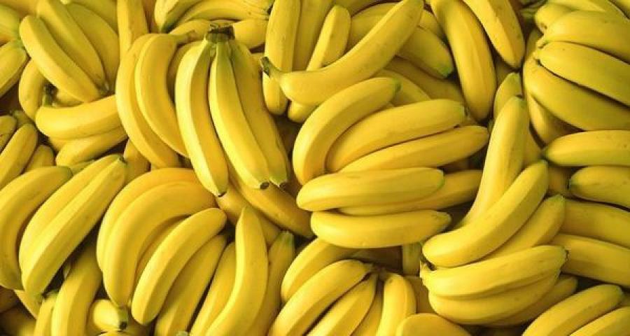 грозди желтых бананов